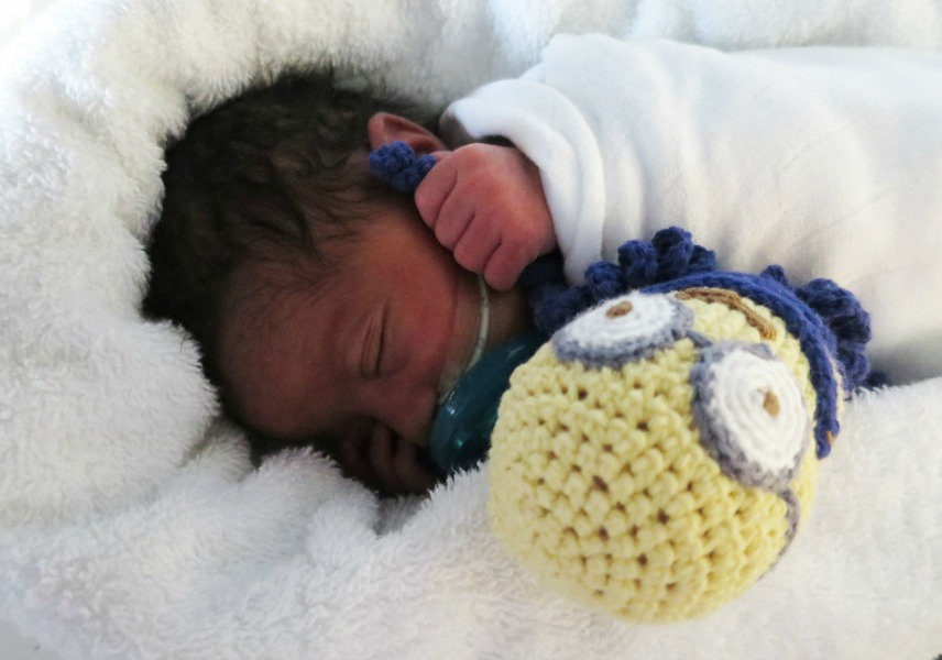 Crocheted Octopus Toys Help Premature Babies Always Ladies